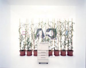 Exhibition view, Incarico, 2000