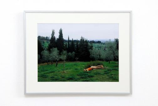Exhibiton view, go climb the mountains, I tell you, and eat strawberries, 2006