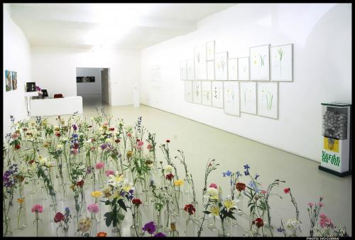 Exhibition view, Flora, 2008