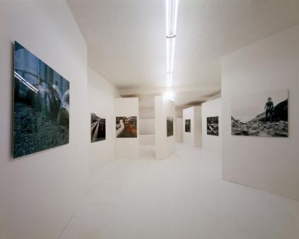 Exhibition view, Josef Rainer, 2004