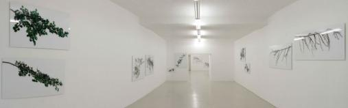 Exhibition view, Karl Unterfrauner, 2005
